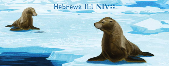 NIV Adventure Bible Polar Exploration Edition – Review & Giveaway
